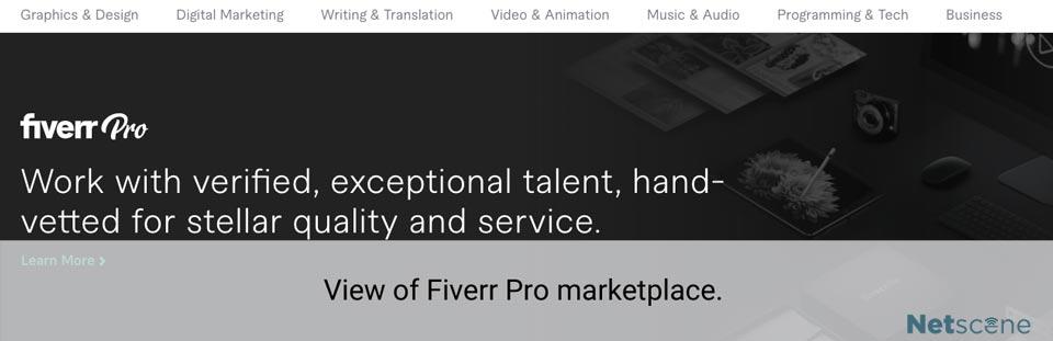 what is fiverr pro?